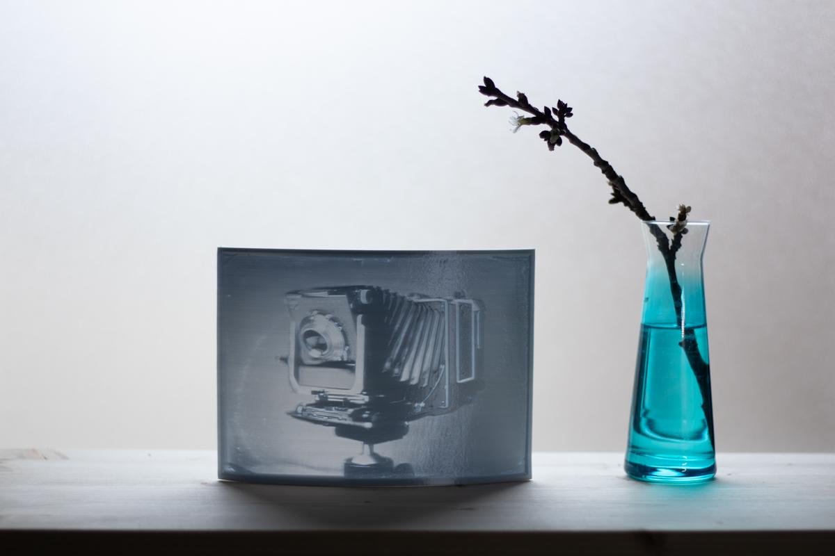 Markus_Hofstaetter_photographer_mhaustria_com_3d_printed_wet_plates13