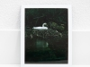 Swan_Expired_readyload_large_format_project_markus_hofstaetter_mhaustria.com_Fujifilm_FP_100C_8