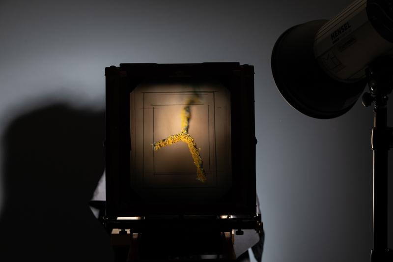 Markus_Hofstaetter_photographer_mhaustria_com_3d_printed_wet_plates_part_210
