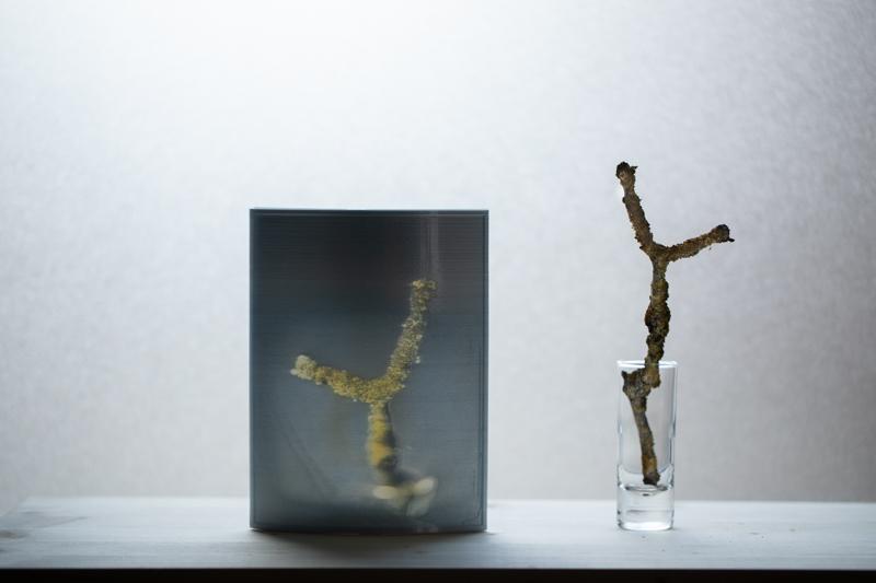 Markus_Hofstaetter_photographer_mhaustria_com_3d_printed_wet_plates_part_216