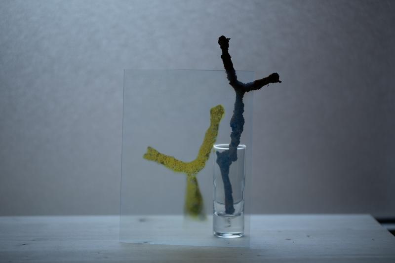 Markus_Hofstaetter_photographer_mhaustria_com_3d_printed_wet_plates_part_219