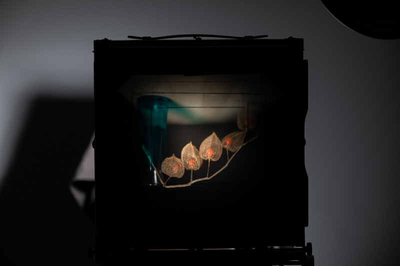 Markus_Hofstaetter_photographer_mhaustria_com_3d_printed_wet_plates_part_22