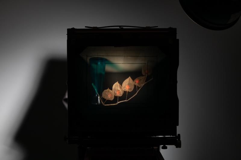 Markus_Hofstaetter_photographer_mhaustria_com_3d_printed_wet_plates_part_24