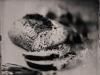 sourdough_bread_wet_plate_food_photography_markus_hofstaetter_hans_gerlach_mhaustria.com_5